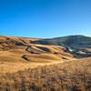 Eastern Washington Dunes