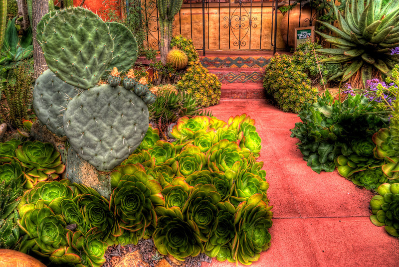 JIM_7562_3_4_5_6_tonemapped
