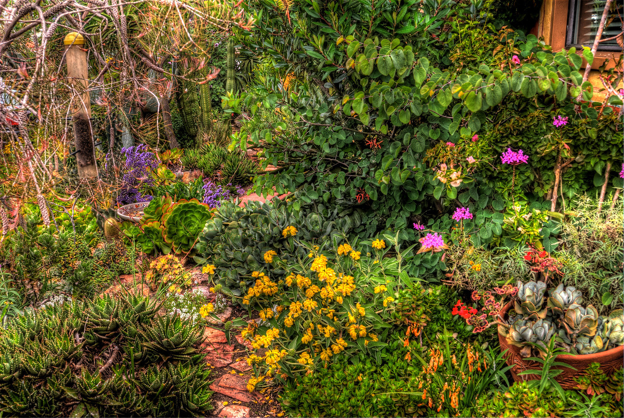 JIM_7572_3_4_5_6_tonemapped