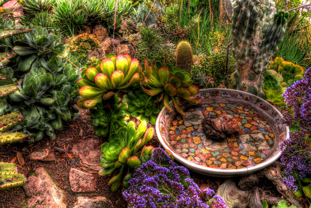 JIM_7567_68_69_70_71_tonemapped