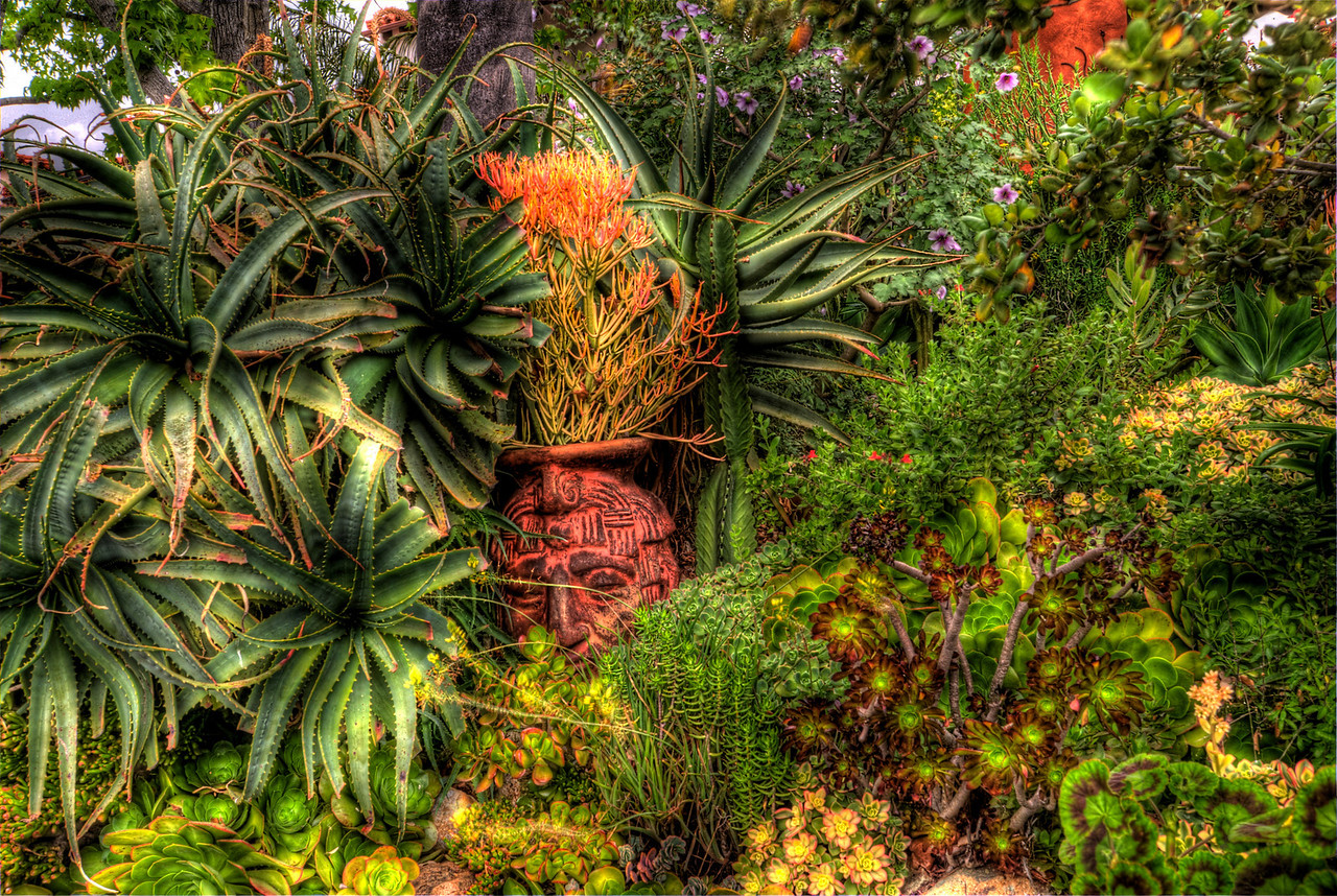 JIM_7532_3_4_5_6_tonemapped