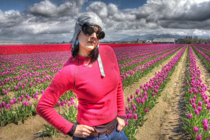 2011 Skagit Valley, Mt. Vernon Tulip Festival, by Nick Shiflet in High Dynamic Range, HDR