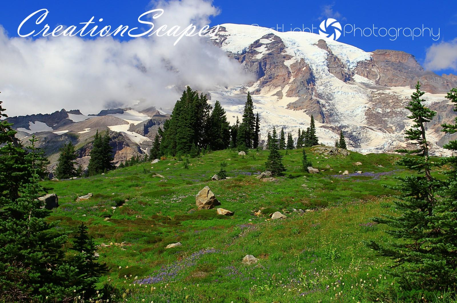Mount Ranier<br /> Washington
