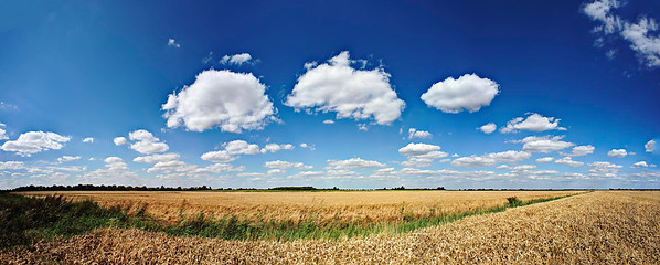 Stow Fen Barn Sky North 180° Panorama