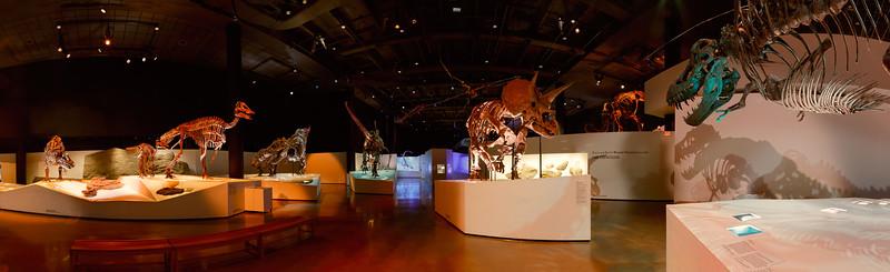 The Morian Hall of Paleontology