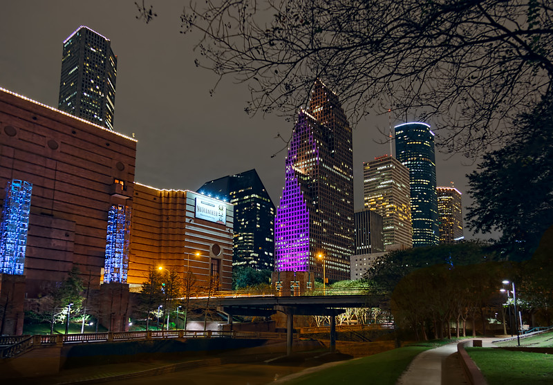 The leafless trees provided an interesting frame for this scene, along with the colorful lights on the Wortham Theater Center and the downtown Houston skyline. Photo by Tim Stanley Photography.