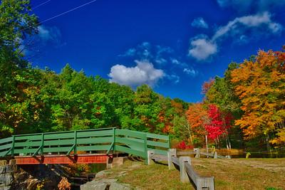 A Look Back at Fall