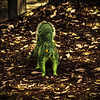 "A (very rare) Hulk  squirrel. (This photo was heavily edited to give it a surreal look using Color Efex Pro)<br /> <br /> For more on this photo, please visit my blog post:<br /> <br /> <br />  <a href=""http://brianmoranhdr.blogspot.com/2011/03/you-wouldnt-like-me-when-im-angry.html"">http://brianmoranhdr.blogspot.com/2011/03/you-wouldnt-like-me-when-im-angry.html</a>"