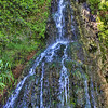 The waterfall located at the Japanese Tea Gardens, Brackenridge Park, San Antonio, Texas