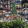 "Christmas tree located in the RiverCenter Courtyard outside of the RiverCenter Mall in San Antonio, Texas.<br /> <br /> Please check out my blog post on this photo: <a href=""http://brianmoranhdr.blogspot.com/2010/12/rivercenter-christmas-tree.html"">http://brianmoranhdr.blogspot.com/2010/12/rivercenter-christmas-tree.html</a>"