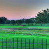 A nightly ritual at the Hyatt Hill Country Resort in San Antonio, Texas. A horse drawn carriage ride along the 9th and 1st holes of the course.