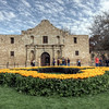 "Yellow roses in front of the Alamo commemorating the 175th anniversary of the Battle of the Alamo in San Antonio, Texas.<br /> <br /> For more on this photo, please visit my blog post:<br /> <br /> <br />  <a href=""http://brianmoranhdr.blogspot.com/2011/03/yellow-rose-alamo-and-san-fernando.html"">http://brianmoranhdr.blogspot.com/2011/03/yellow-rose-alamo-and-san-fernando.html</a>"
