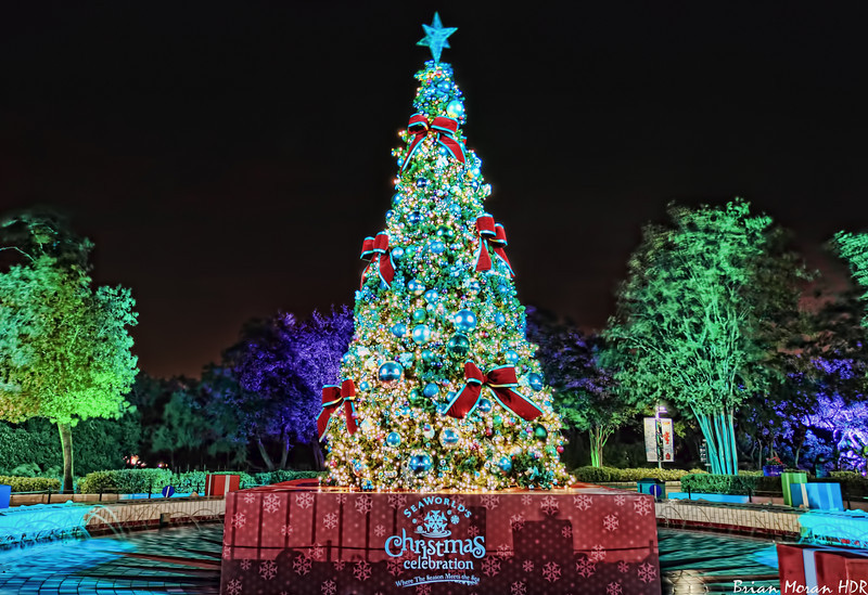 """Christmas tree as you enter Sea World San Antonio in San Antonio, Texas as part of Sea World's Christmas Celebration.<br /> <br /> For more information about this photo, please visit my blog post: <a href=""""http://brianmoranhdr.blogspot.com/2010/11/sea-world-san-antonio-christmas.html"""">http://brianmoranhdr.blogspot.com/2010/11/sea-world-san-antonio-christmas.html</a>"""
