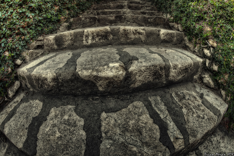 """A fisheye-d view of steps at the Japanese Tea Garden in Brackenridge Park in San Antonio, Texas.<br /> <br /> If you would like to read more about this photo, please visit my blog post:<br /> <br /> <br />  <a href=""""http://brianmoranhdr.blogspot.com/2011/11/walk-this-way.html"""">http://brianmoranhdr.blogspot.com/2011/11/walk-this-way.html</a>"""