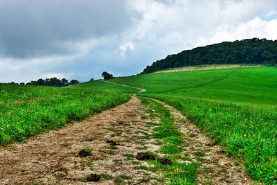 Sunday Hike  http://sillymonkeyphoto.com