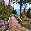 Ellison Bay Boardwalk