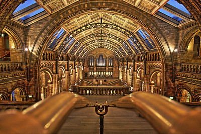 Natural History Museum - Main Hall