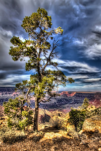 Grand Canyon South Rim_002
