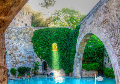 A side garden and pond at the Cathedral of Santo Maria in Mallorca, Spain.