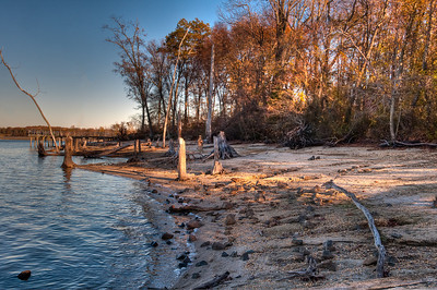 Manasquan Reservoir Nov 2010-1