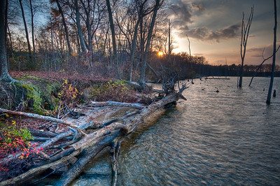 Manasquan Reservoir-Nov 2009