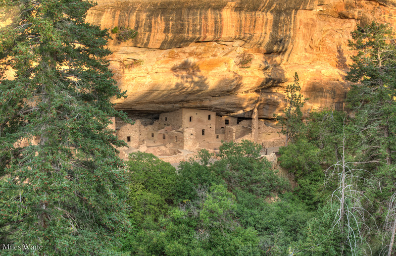 Close up of Spruce Tree House Cliff Dwelling.