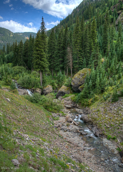 More of the Uncompahgre River taken on the Mineral Creek Trail.