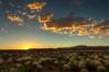 Sunset in the desert. Goosnecks State Park.