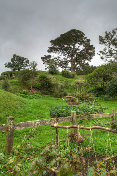 Gardens and Hobbit houses.