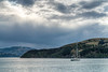 A lone sailboat in French Harbor, Akaroa.