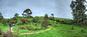 Wide angle of part of the Hobbit village.
