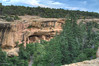 Spruce Tree House Cliff Dwelling.