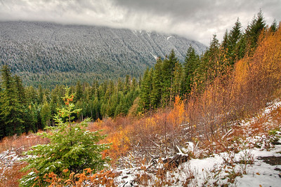 My last image on the way home, had to capture that mist and snow against the last of the fall color!