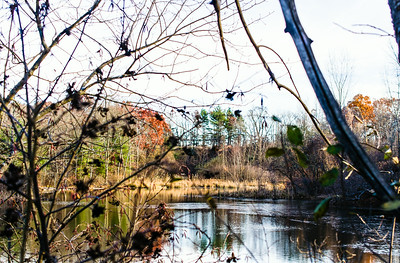 Pond HDR