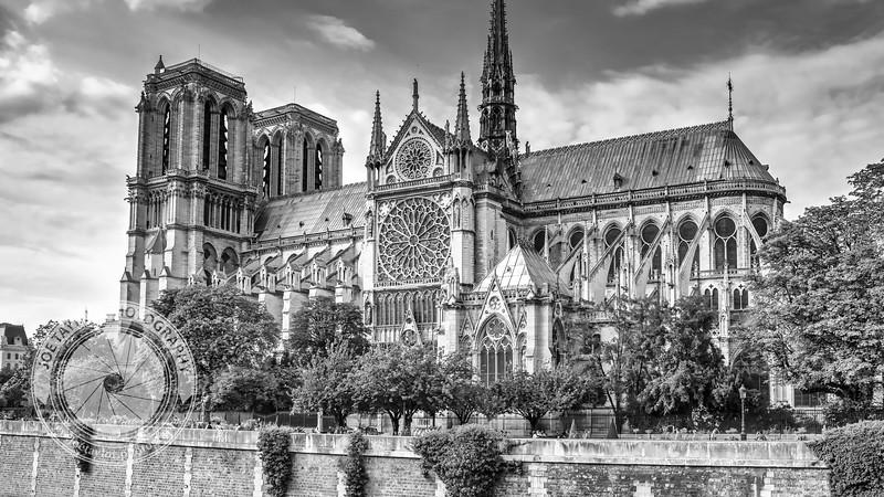 Paris - Notre Window