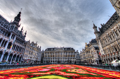 Brussels Grand Place Carpet of Flowers 2014