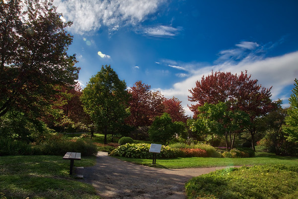 Botanic Garden HDR