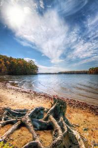 Lake Anna Autumn  A crisp Fall day on the shore of Lake Anna, Virginia.
