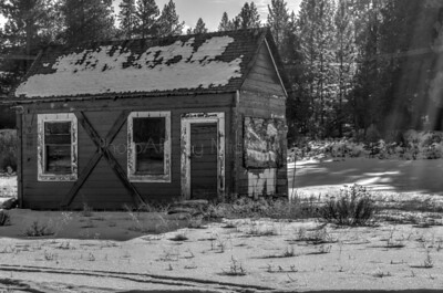Cottonwood: Old Red Cabin (Monochrome)