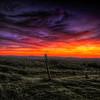 marmalade skies | woodside
