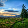 dream a little dream | lake hayes, new zealand