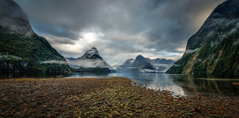 sound of silence | fiordland, new zealand