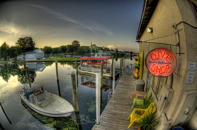 Crystal River, Florida Birds Underwater Dive Shop
