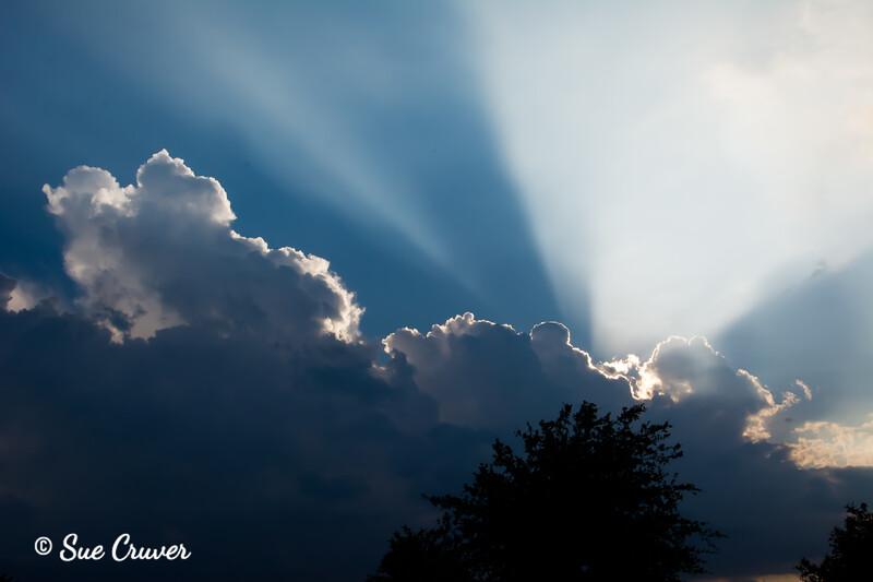 Spotlight in the Sky