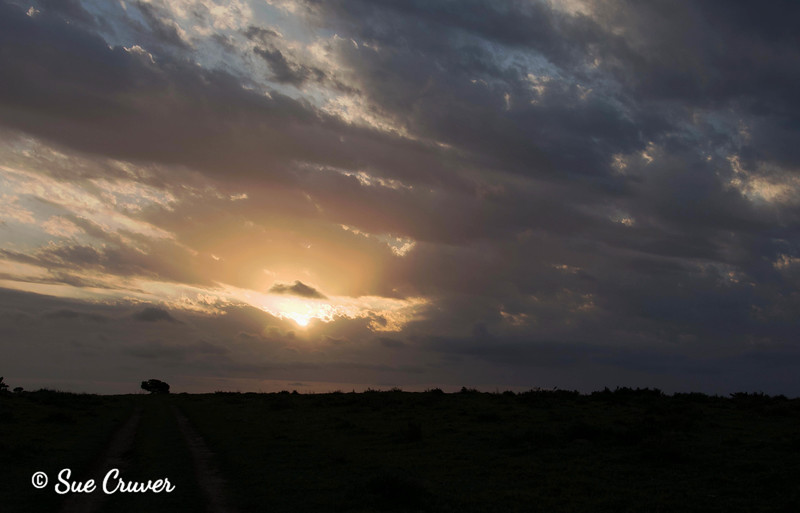 Sun Setting in South Africa