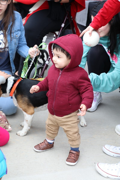 A toddler plays with a dog.