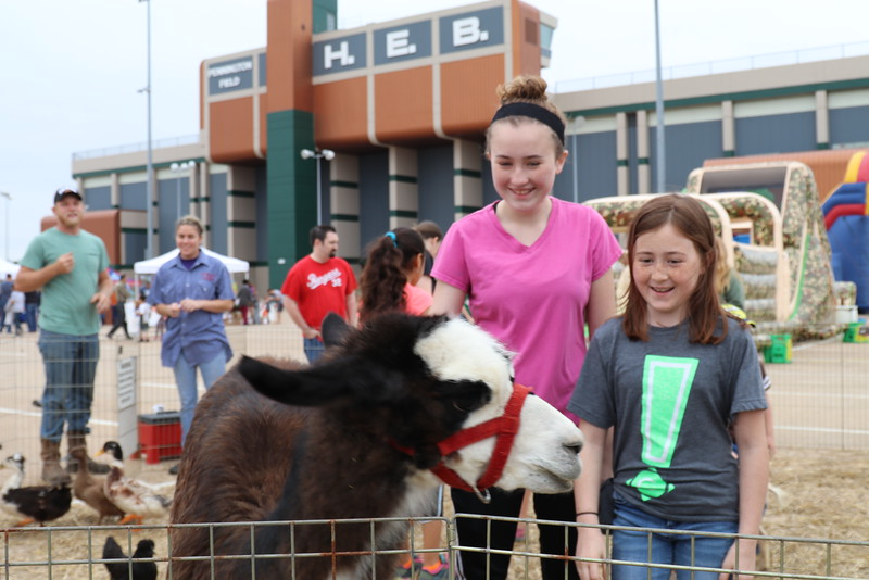 Students pet a goat.