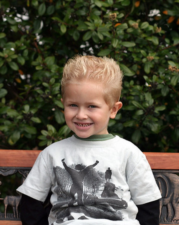 Mason 2009