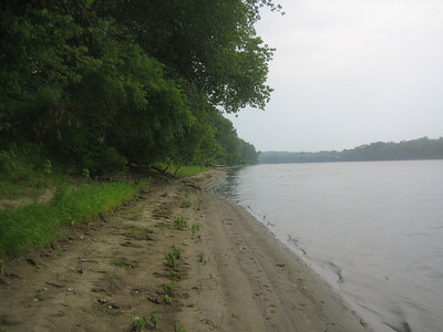 Walking upstream along Connecticut River. See the Rte I-391 Bridge in far distance.