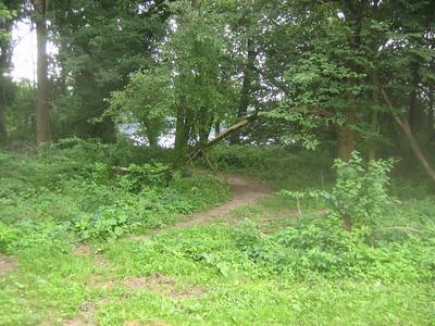 I see that I'm not the first to go here. A nice path beckons!